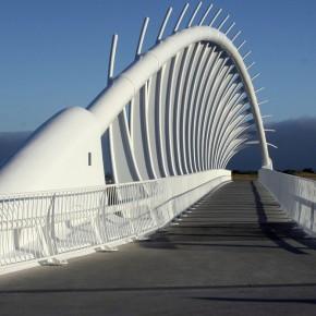 Pasarela-Te-Rewa-Rewa-Nueva-Zelanda-4