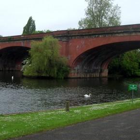 Puente-Maidenhead-Brunel-5