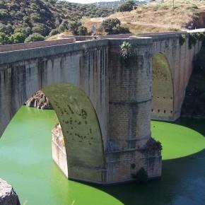 Puente-Almaraz-Aguas-abajo-1