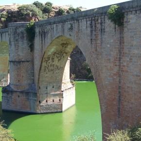 Puente-Almaraz-Orilla-izquierda-6